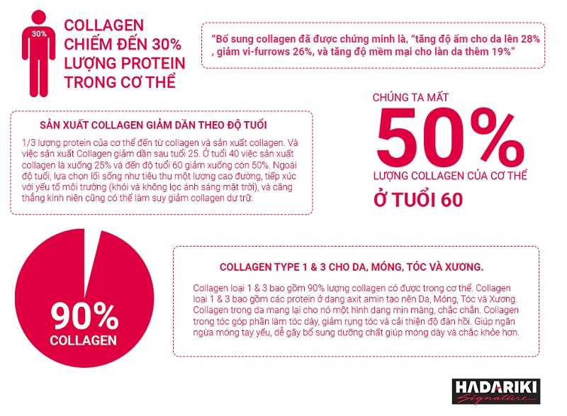 Tầm quan trọng của Collagen đối với cơ thể