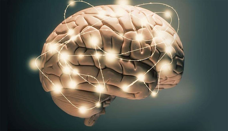 Dinh dưỡng cho trí não